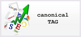 contenidos-web-canonical
